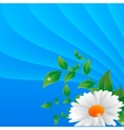 daisy on a abstract background vector image