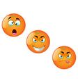 Cartoon Orange Fruit Set 2 vector image vector image