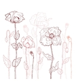 Floral background Hand drawn Poppies vector image vector image