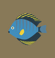 in flat style discus fish vector image