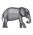 a big elephant vector image