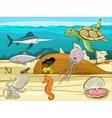 Sea life cartoon educational vector image