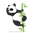 Climbing Panda vector image