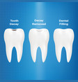treatment of caries dental filling isolated on a vector image
