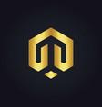 shape line polygon business gold logo vector image
