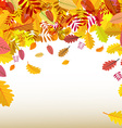 Autumn Background Orange Falling Leaves vector image