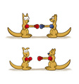 Boxing Kangaroo Set vector image