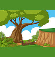 scene with cliff and trees vector image