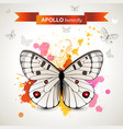 apollo butterfly vector image