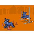 Dog Agility Training Cartoon vector image