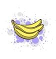 Bright Juicy Banana vector image