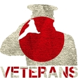 veterans flag sign vector image