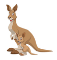 Kangaroo with a cub vector image