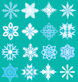 16 snowflakes vector image