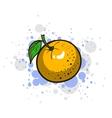 Bright Juicy Orange vector image