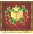 Christmas present on the spruse vector image