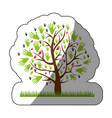 color silhouette sticker of tree with leaves in vector image