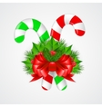 Traditional christmas candy cane with decor vector image