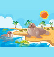 two walrus on the beach vector image