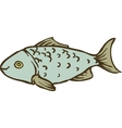 Fresh Gray Fish vector image