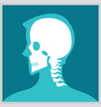 xray of head and neck vector image
