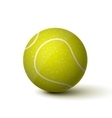 Realistic Tennis Ball Icon vector image vector image