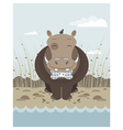 hippo on the banks of a river vector image