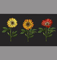 three hand drawn yellow and red daisy flowrs vector image