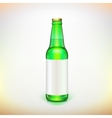 Glass beer green bottle and label Product packing vector image vector image