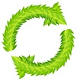 wreath of green laurels vector image vector image