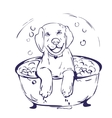 Dog bath grathic vector image
