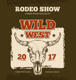 vintage cowboy rodeo show event poster with vector image vector image
