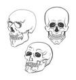 set of skulls on white background vector image