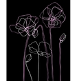 Pink poppies on a black background vector image vector image