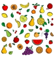 Ripe fresh fruits and berries icons vector image