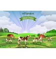 Rural sunrise landscape with cows and farm vector image