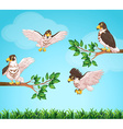 Four eagles flying in sky vector image vector image