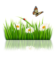 Nature grass background vector image vector image