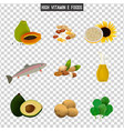 high vitamin e foods vector image