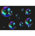 Multi colored soap bubbles on black background vector image