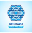 Fantastic flower icon vector image