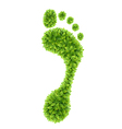 Foliage footprint vector image