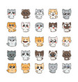 cute cartoon cats and dogs with different emotions vector image