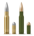 Rifle and pistol bullets vector image