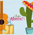 viva mexico colorful poster with guitar and cactus vector image