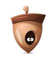 nuts cartoon healthy food vector image