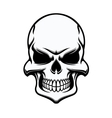 Black and white eerie human skull vector image vector image