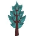 Cartoon conifer Tree Isolated vector image