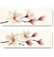 Two magnolia banners vector image vector image