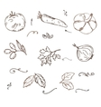 Doodle Vegetables sketch vector image
